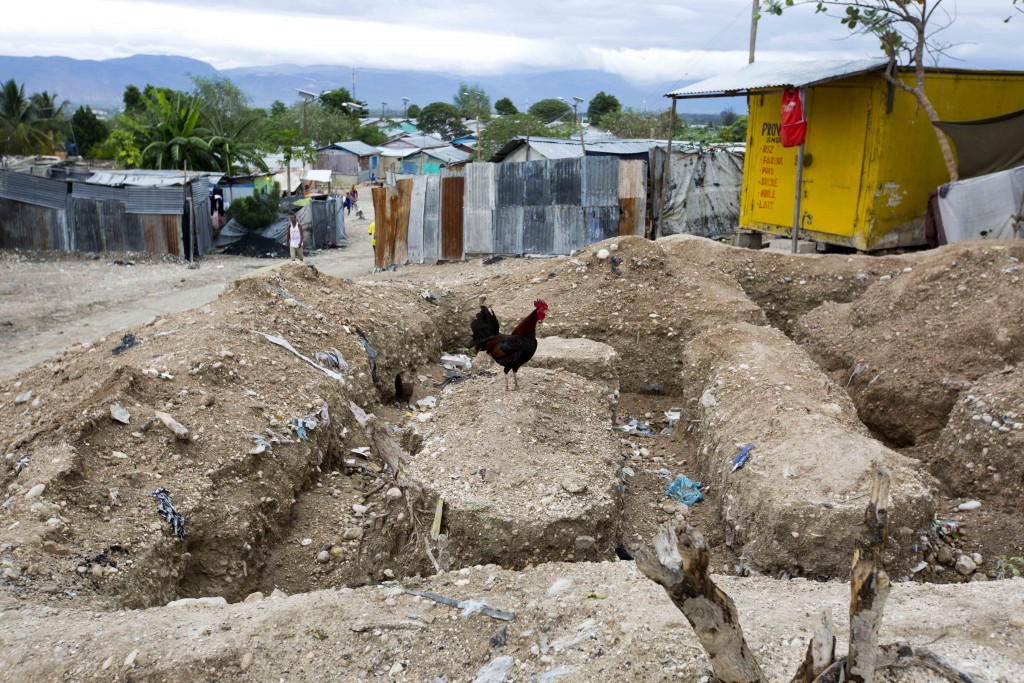 In this Friday, Jan. 5, 2018 photo, a rooster stands in the middle of a construction site for a concrete home, in the Caradeux tent camp set up nearly