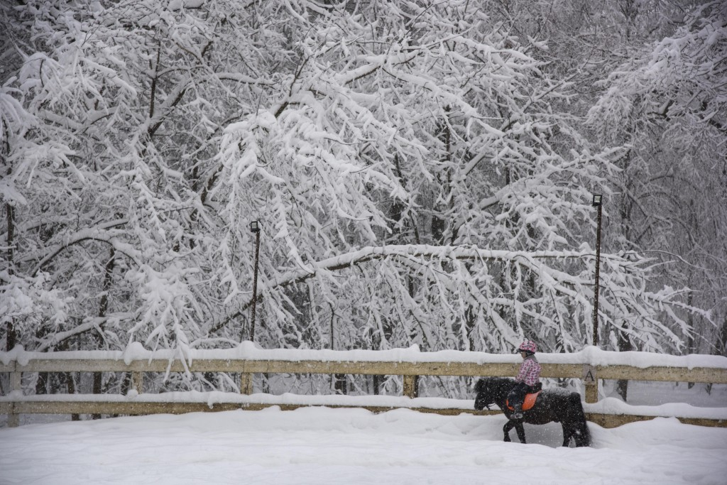 A girl rides a pony in the Botanical Garden during heavy snowfall in Moscow, Russia, Sunday, Feb. 4, 2018. Heavy snow has struck the Moscow region, as
