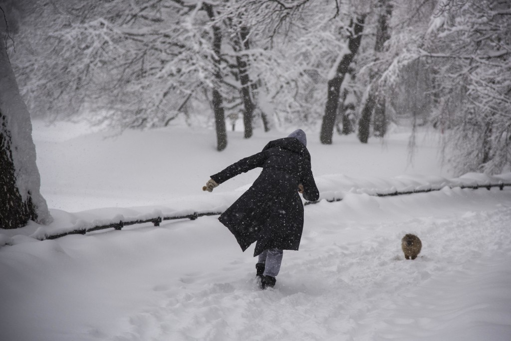 A woman walks her pet in the Botanical Garden during a heavy snowfall in Moscow, Russia, Sunday, Feb. 4, 2018. Heavy snow has struck the Moscow region
