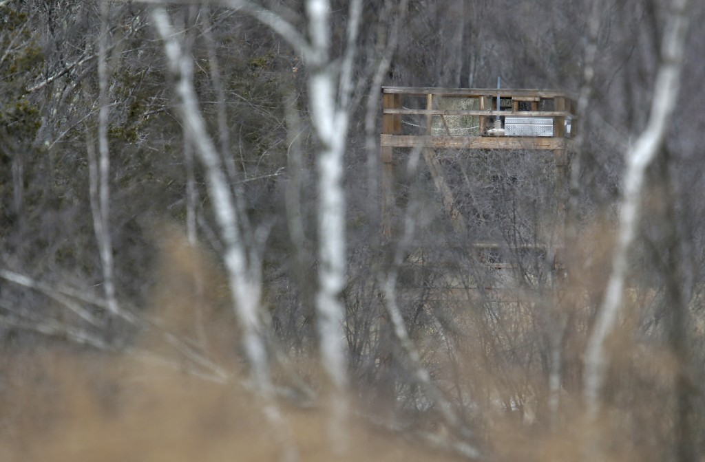 In this Feb. 1, 2018, photo, a large tower seen from a public road, is visible through the trees at Leather Hill Preserve in Wingdale, N.Y. A company