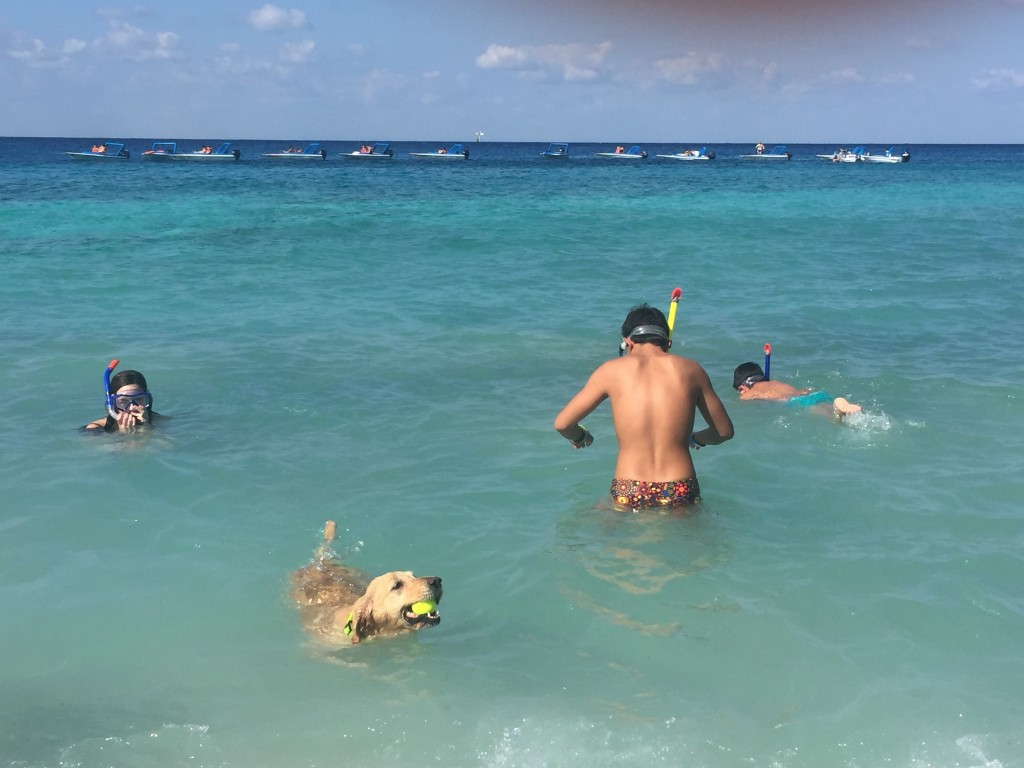 This Dec. 25, 2017 photo taken in Cozumel, Mexico shows people and a dog swimming in the Caribbean. Mexico is a popular vacation destination for winte