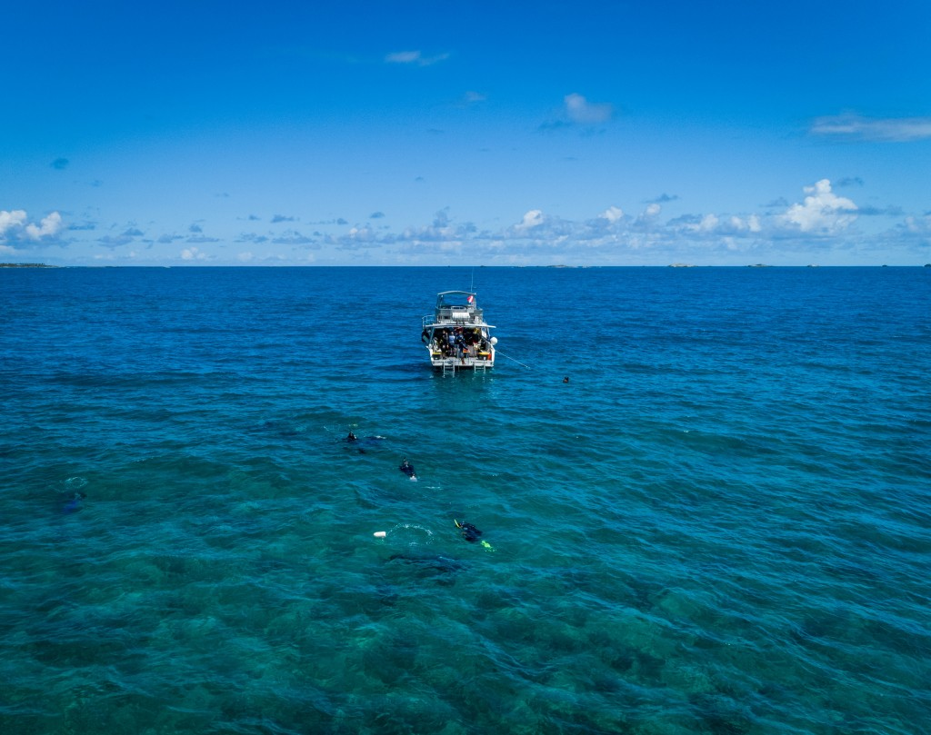 In this In Feb. 28, 2018 photo, a group of divers swim in a reef off the northeast coastal town of Fajardo, a popular destination for tourists eager t