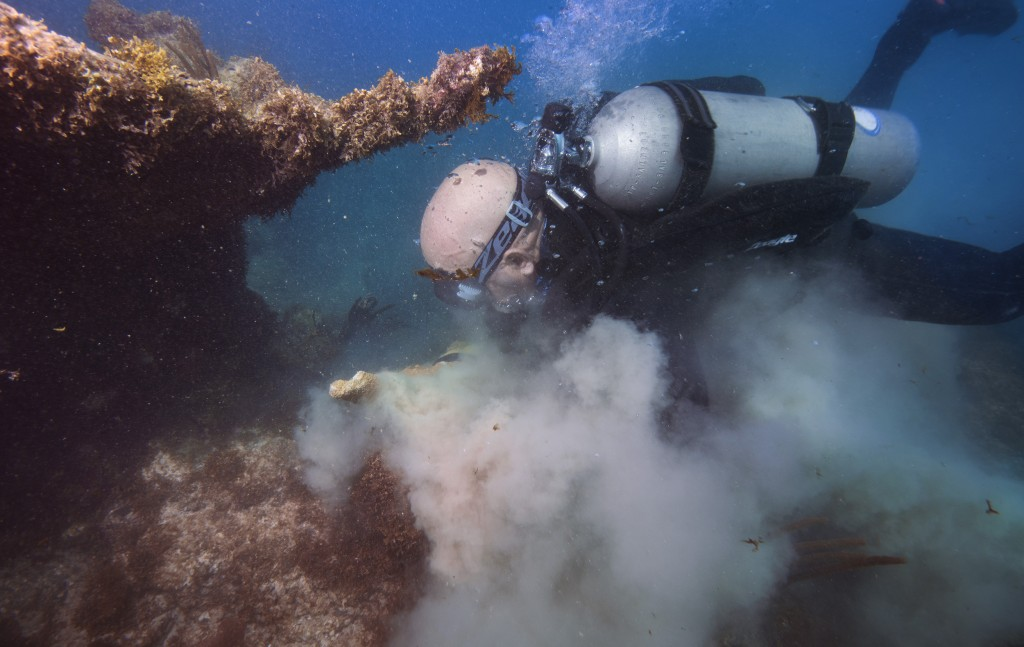 In this In Feb. 28, 2018 photo, Force Blue Diver Angelo Fiore replants corals ripped off during Hurricane Maria as part of a nearly $1.5 million coral