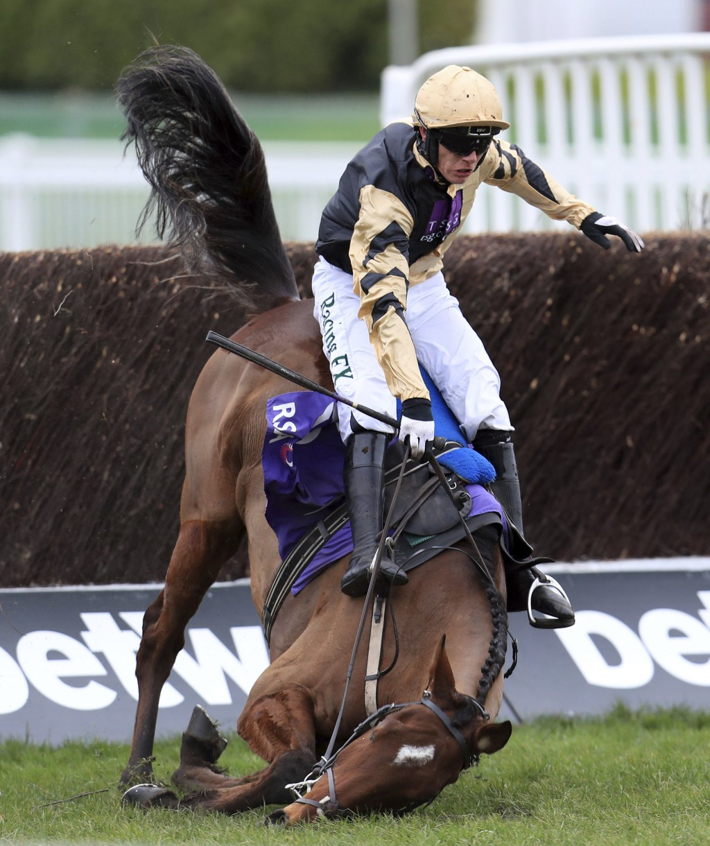 Bonbon Au Miel and Paul Townend part company in the RSA Insurance Novices' Chase at Cheltenham Racecourse, Cheltenham England Wednesday March 14, 2018