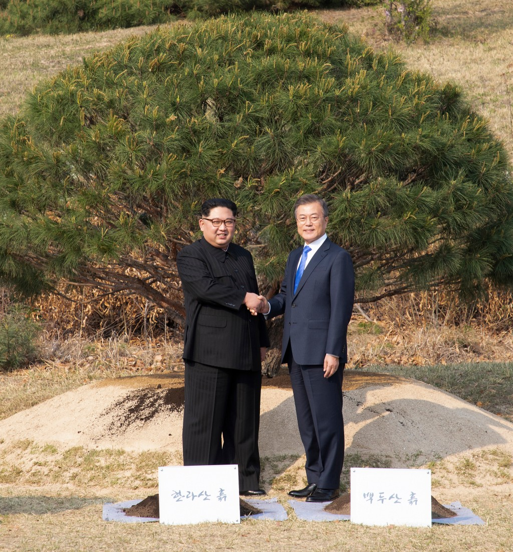 North Korean leader Kim Jong Un, left, and South Korean President Moon Jae-in shake hands after planting a pine tree near the military demarcation lin...