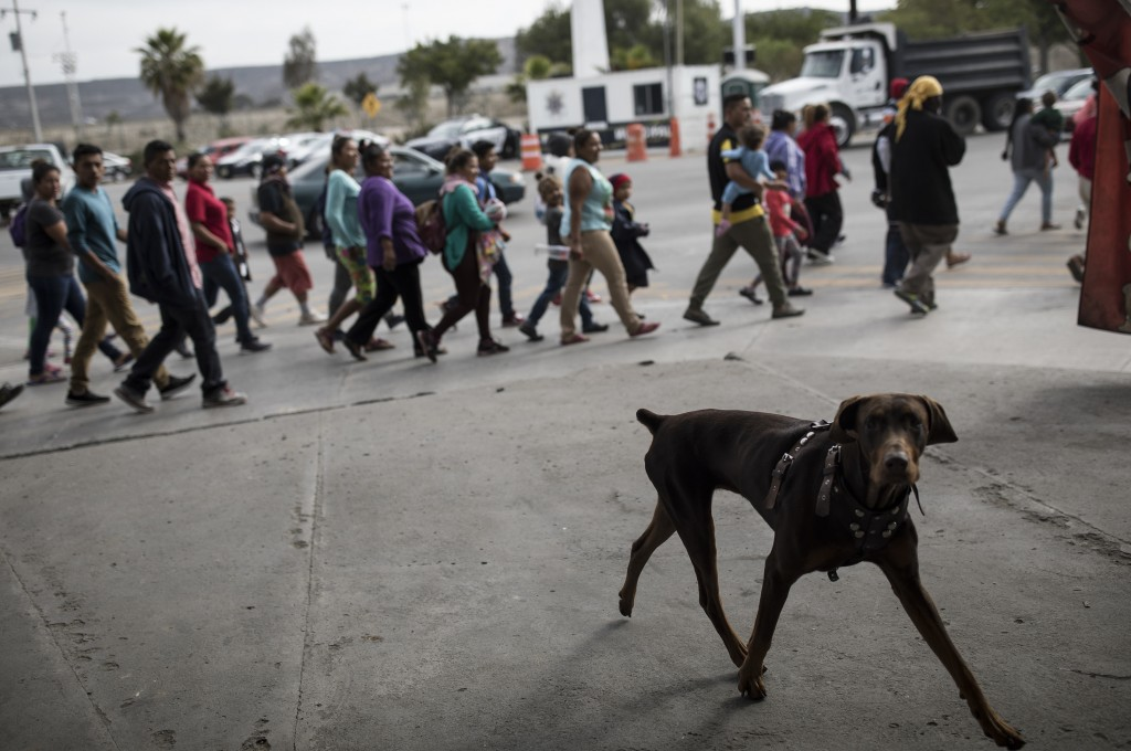 Migrants walk to the place where they will be meeting with immigration lawyers, seeking to enter the United States from Tijuana, Mexico, Friday, April...
