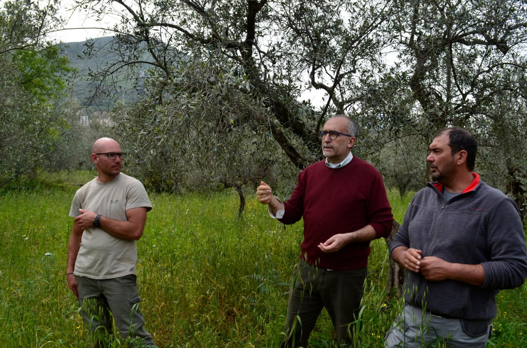 This April 4, 2018 photo shows pruner Giovanni Caruso, left, Giuseppe Lo Presti, right, an agronomist, and Gregorio Ugdulena, the owner, talking on a ...