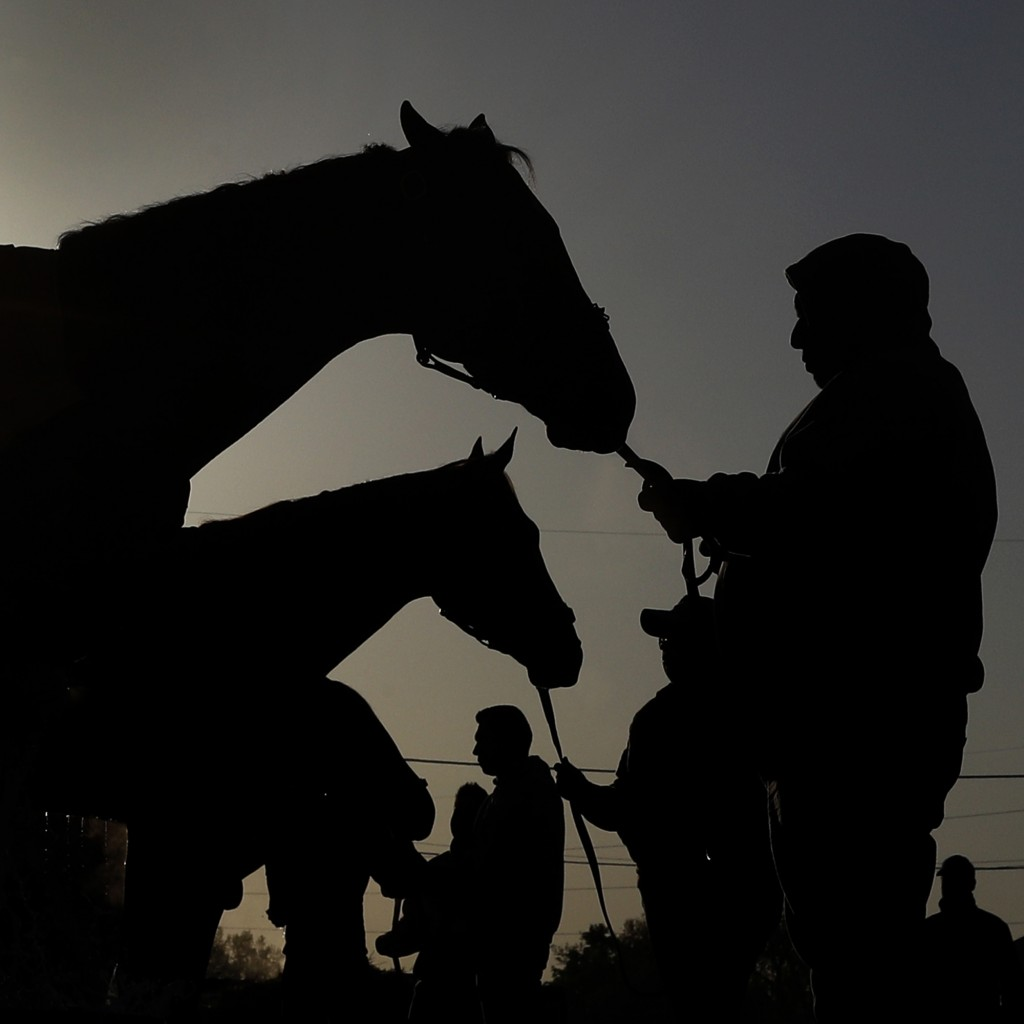 Kentucky Derby hopefuls Audible, front, and Vino Rosso get baths after their morning workout at Churchill Downs Monday, April 30, 2018, in Louisville,...