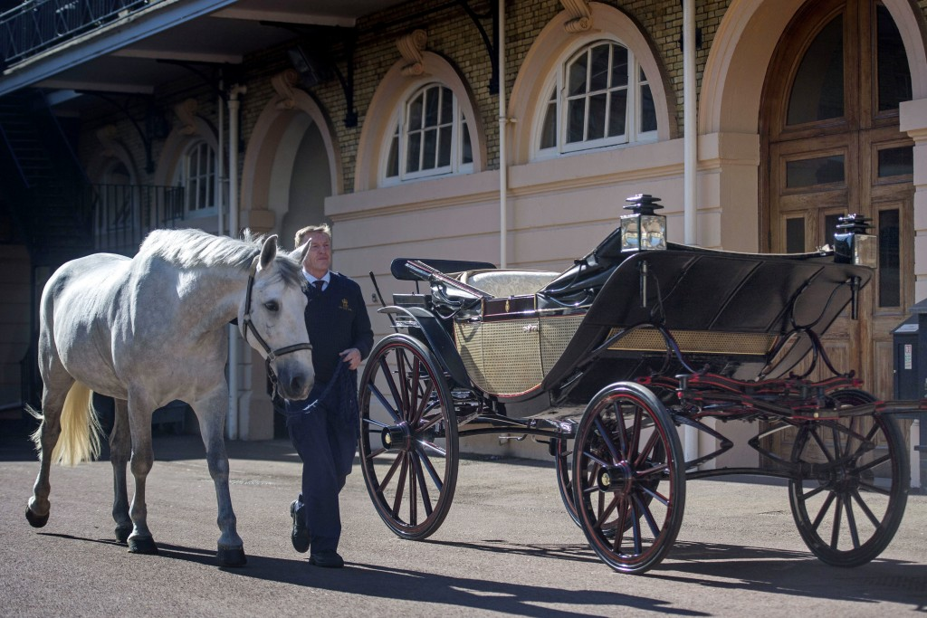 Philip Barnard-Brown, Senior Coachman at the Buckingham Palace Mews, leads a Windsor Grey, one of the four horses that will pull the carriage at the w...