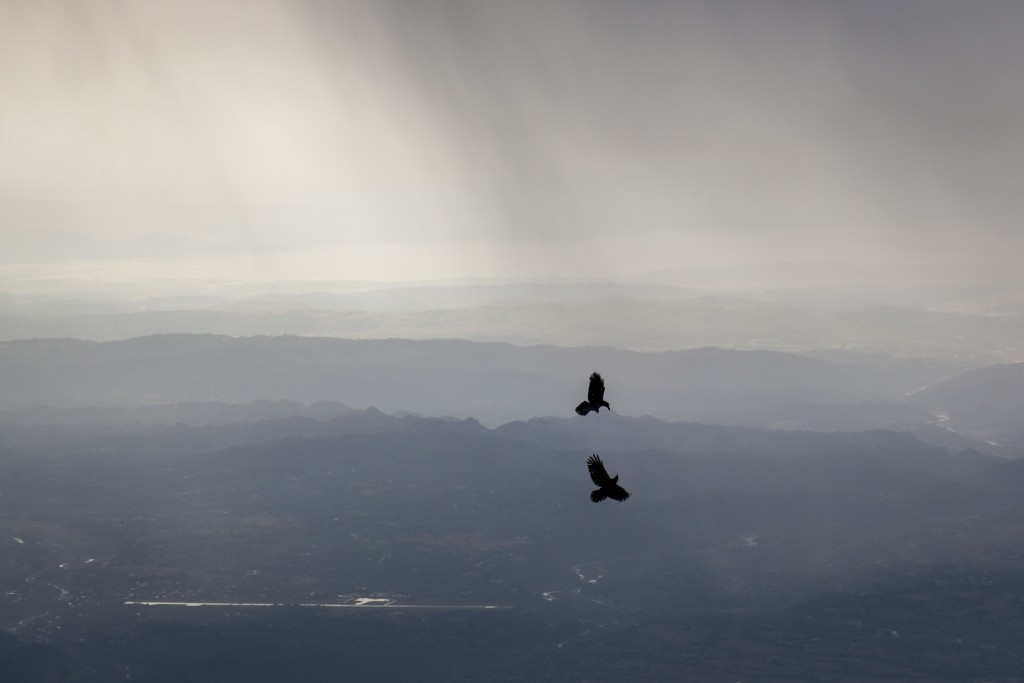 Crows fly as dark streaks of rain fall over Kangra Valley in Dharmsala, India, Thursday, May 3, 2018. A powerful dust storm and rain swept parts of no...