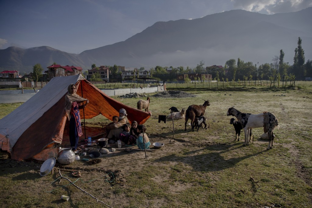 In this May 9, 2018, photo, a Kashmiri nomadic Bakarwal family camps in outskirts of Srinagar, Indian controlled Kashmir. After centuries of traversin