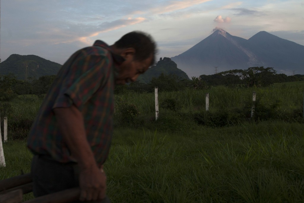 A man pulls a cart as the Volcan de Fuego, or Volcano of Fire, blows outs a cloud of ash, as seen from Escuintla, Guatemala, Tuesday, June 5, 2018. at...