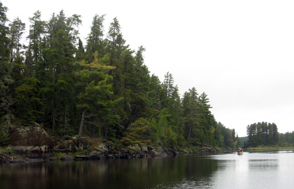 This Sept. 17, 2016 photo shows canoeists paddling in the misty solitude of the pine forest-fringed lakes in Minnesota's Boundary Waters Canoe Area Wi...