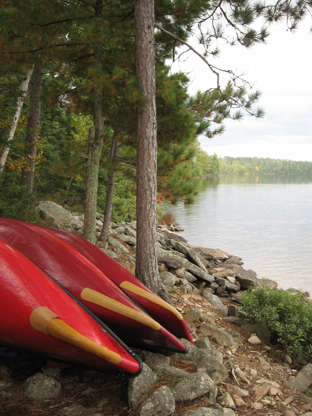 This Sept. 16, 2017 photo shows canoes pulled out of the water for the night at a campsite on Parent Lake in Minnesota's Boundary Waters Canoe Area Wi...