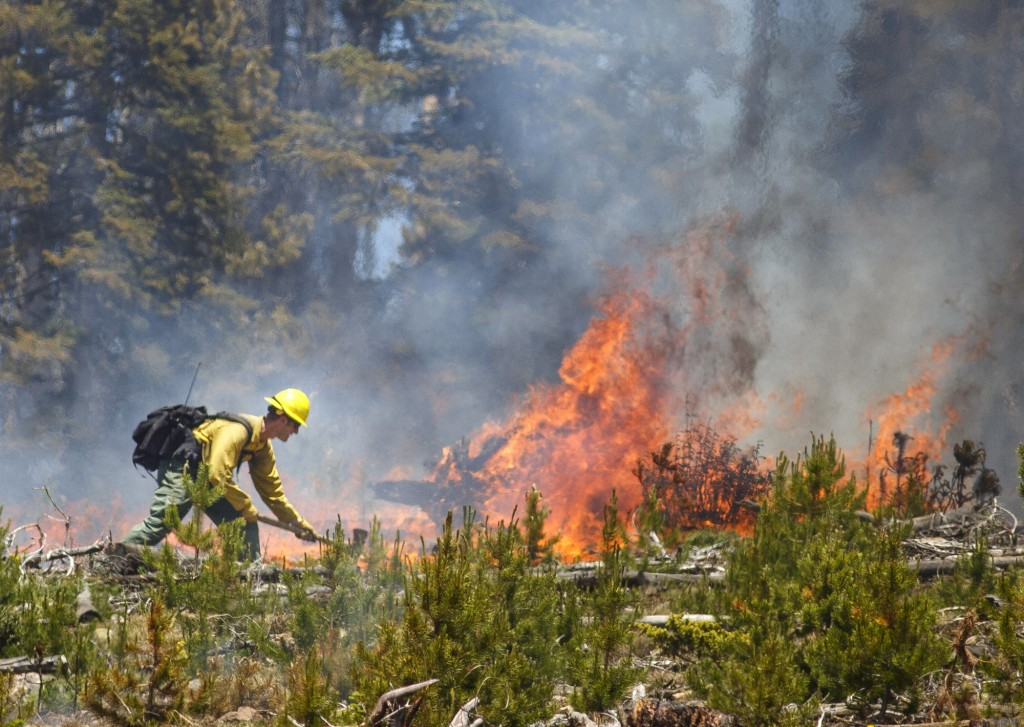 A wildland firefighter works to contain the flames at the Buffalo Fire site Wednesday, June 13, 2018, near Silverthorne, Colo. As of 10:45 am Wednesda