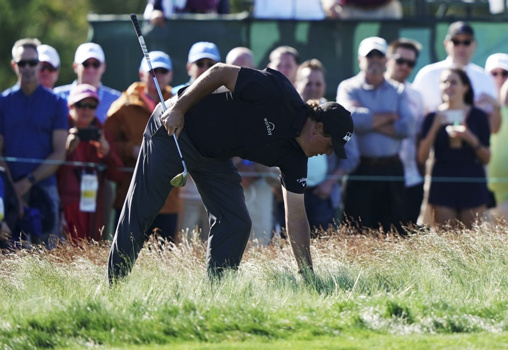 Phil Mickelson checks his lie in the fescue on the 12th hole during the first round of the U.S. Open Golf Championship, Thursday, June 14, 2018, in So