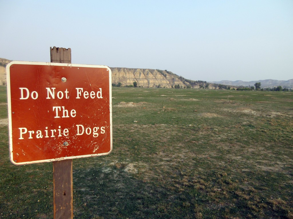 """This Sept. 3, 2017 photo shows a """"Do not feed the prairie dogs"""" sign at Theodore Roosevelt National Park in Medora, N.D., with a view of the badlands ..."""