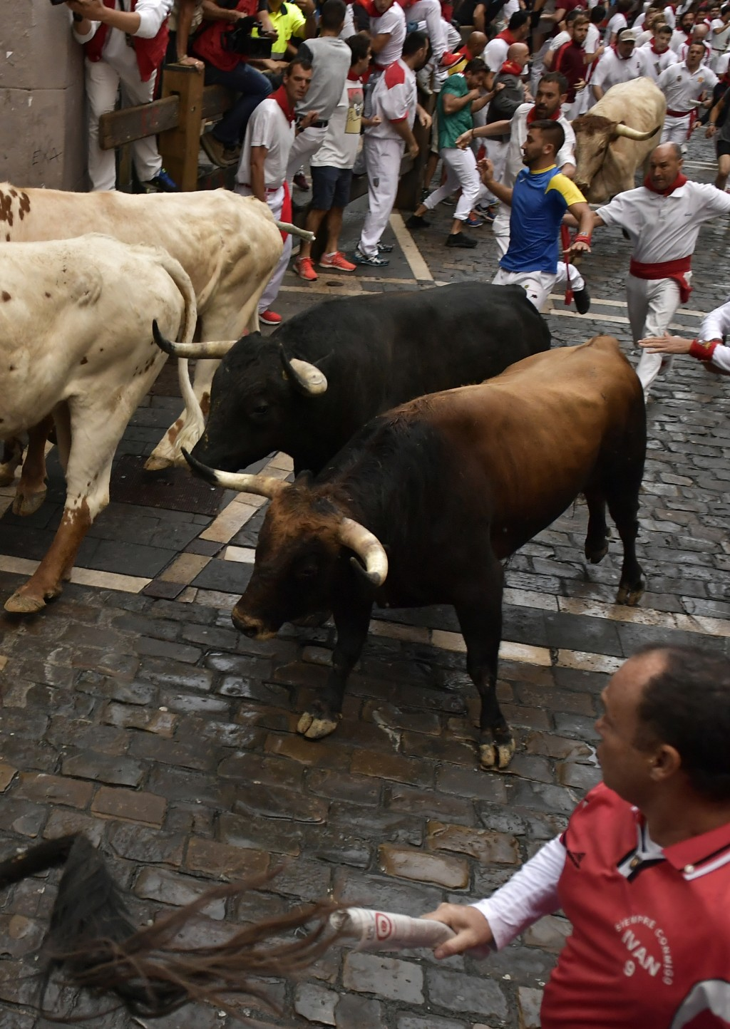 Revellers run next to fighting bulls from the Victoriano del Rio ranch during the 6th day of the running of the bulls at the San Fermin Festival in Pa
