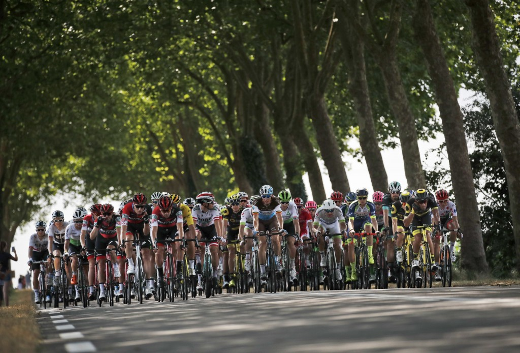 The pack rides under the foliage of plane trees during the seventh stage of the Tour de France cycling race over 231 kilometers (143.5 miles) with sta