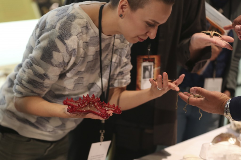 Marine biologist John Karavias, right, shows visitors the anatomy of a sea star at the American Museum of Natural History during the adult-only sleepo...