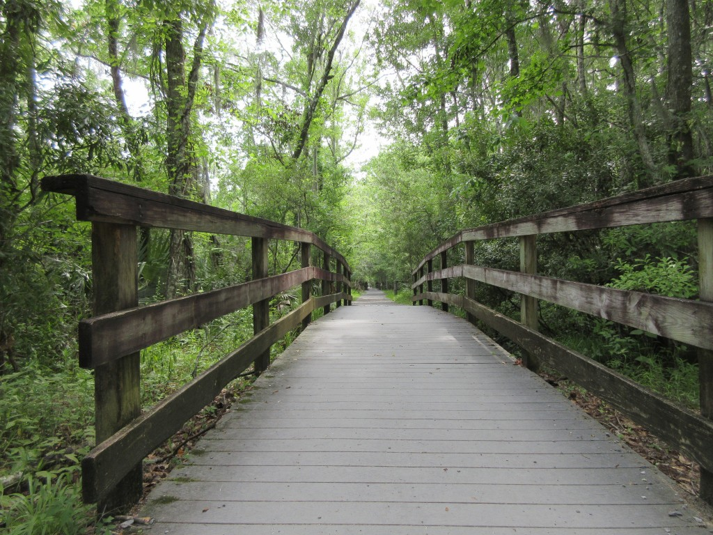 This June 3, 2018 photo shows a walkway in the Barataria Preserve, part of Jean Lafitte National Historical Park and Preserve in Marrero, Louisiana, j...