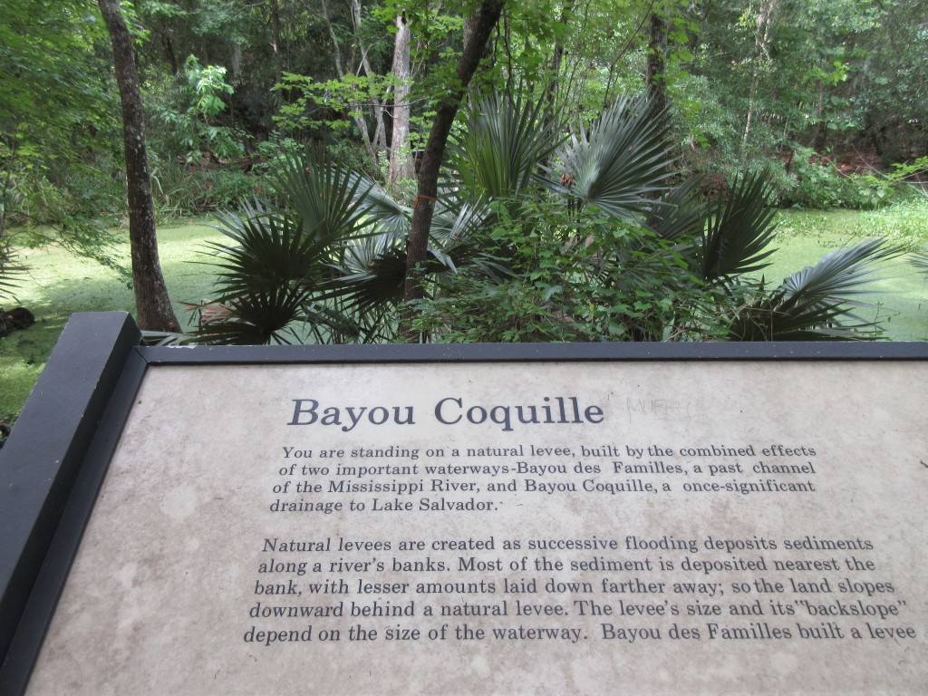 This June 3, 2018 photo shows a sign marking Bayou Coquille on a trail in the Barataria Preserve, part of Jean Lafitte National Historical Park and Pr...