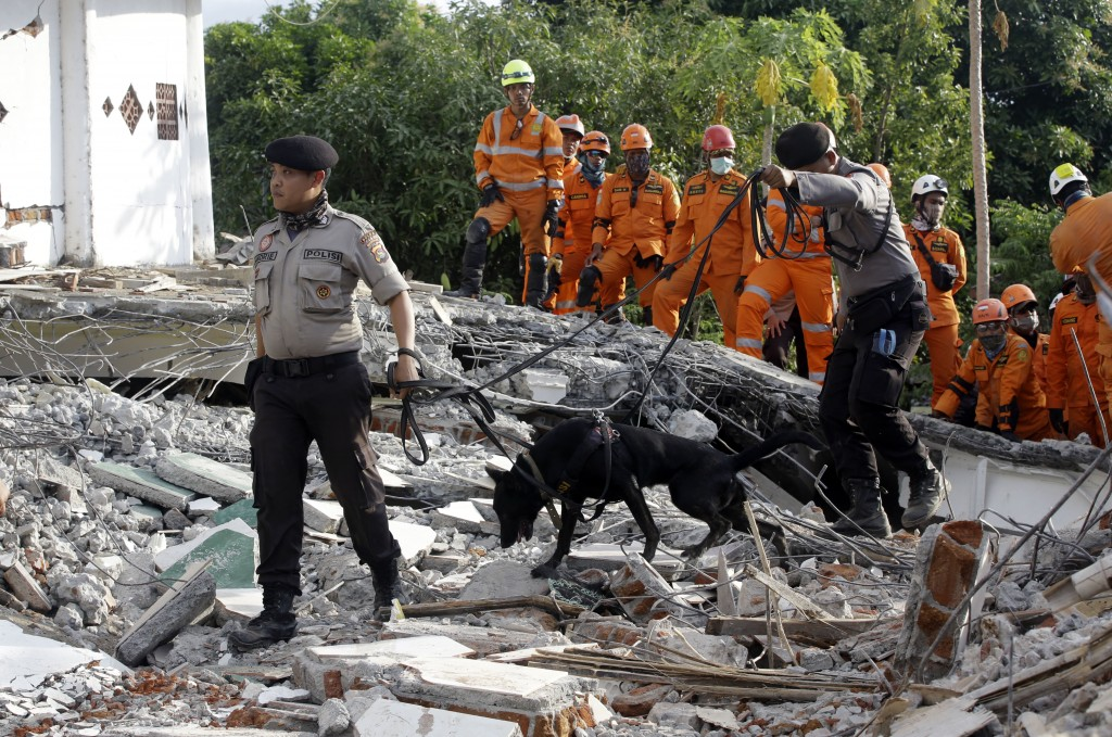 Rescuers with sniffer dogs search for victims at a mosque damaged by an earthquake in North Lombok, Indonesia, Tuesday, Aug. 7, 2018. Thousands of peo...