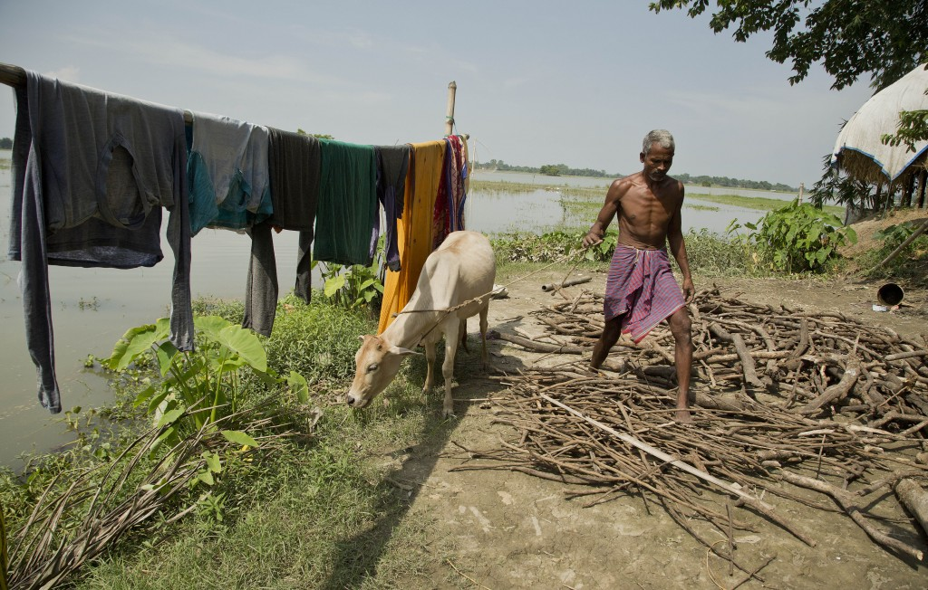 In this Thursday, Aug. 9, 2018 photo, Hindu farmer Khitish Namo Das, 50, who insists he was born in India, works at his house in Mayong, 45 kilometers