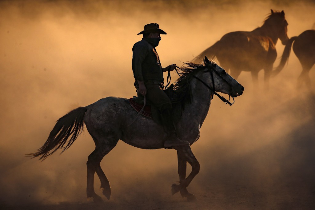 In this photo taken on Sunday, Aug. 5, 2018, Ali Kemer, a 50-year-old horse-breeder, herds horses in the village of Hormetci, on the foothill of Mount