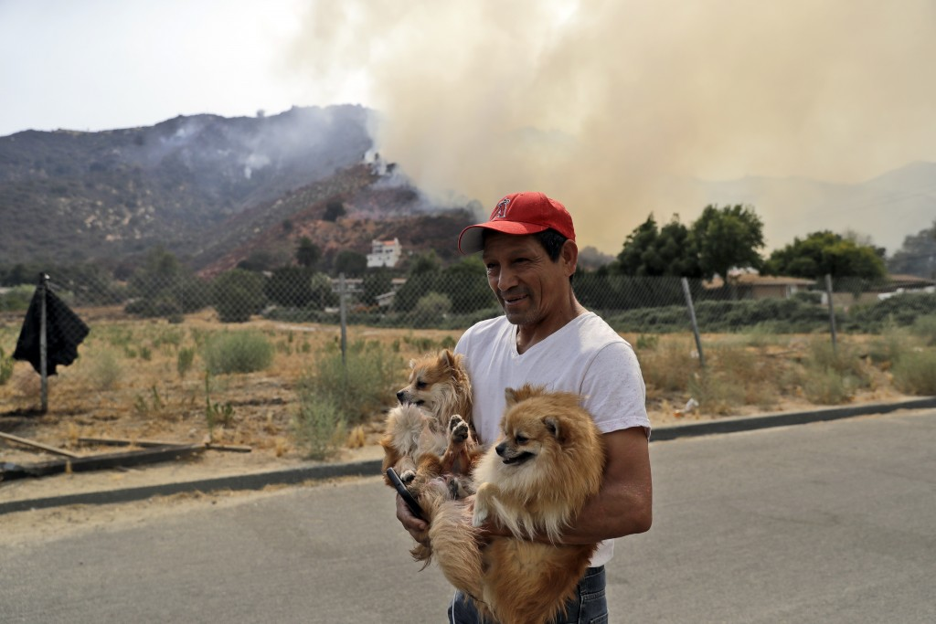 Emilio Manzo evacuates with his two dogs as a wildfire threatens a neighborhood Friday, Aug. 10, 2018, in Lake Elsinore, Calif. (AP Photo/Marcio Jose