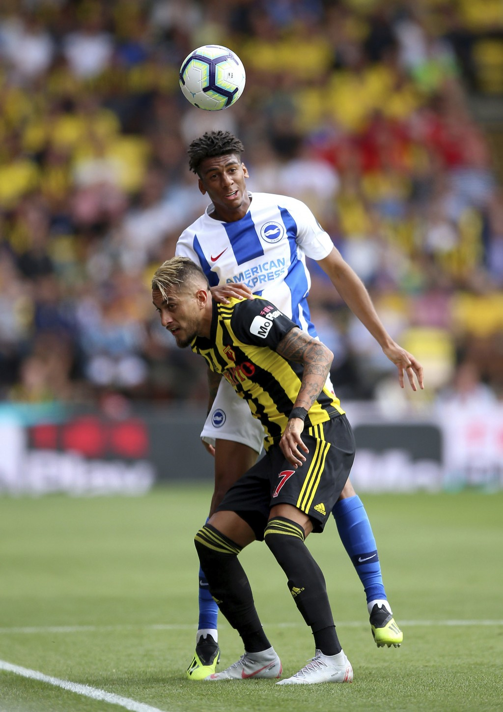 Watford's Roberto Pereyra, front, and Brighton & Hove Albion's Bernardo during their English Premier League soccer match at Vicarage Road in London, E