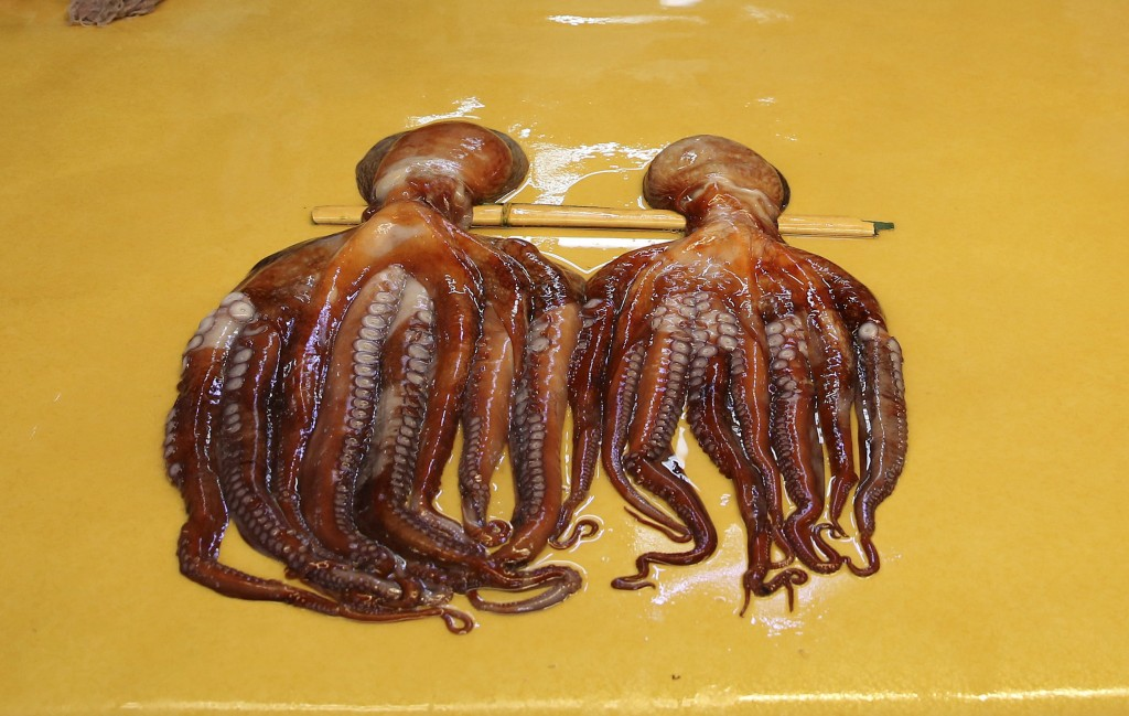 FILE - In this Sunday, Feb. 18, 2018 file photo, octopus are seen drying out before sale at a market in Gangneung, South Korea. Whether it's stewed in...