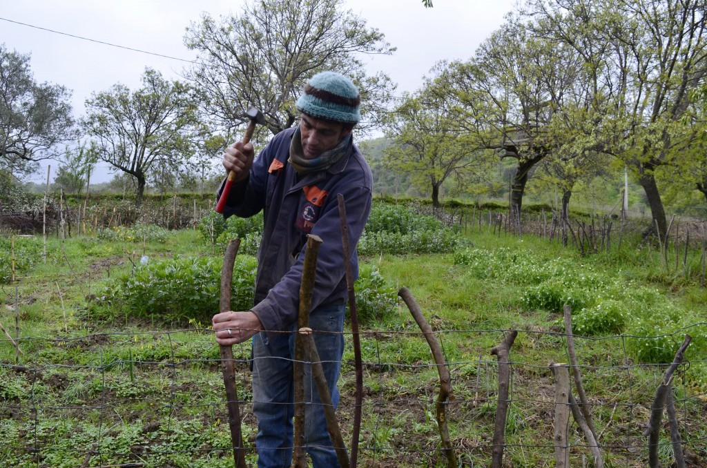 This March 26, 2018 photo shows writer Cain Burdeau hammering into the ground a post for a garden wattle fence he's making on a property he lives on w...