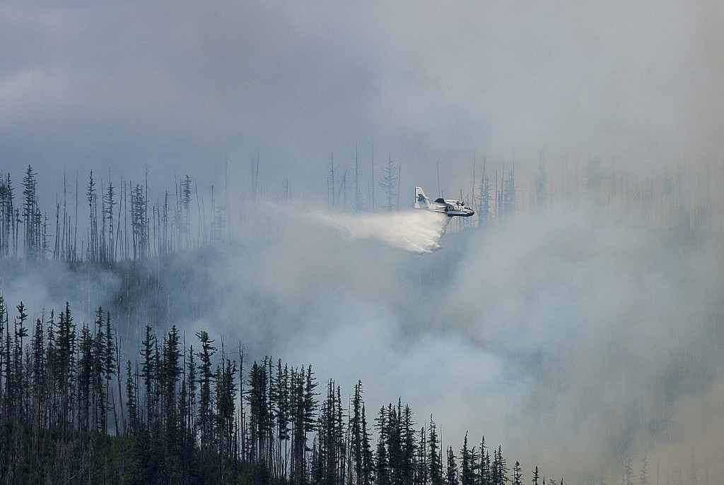 In this photo taken Sunday, Aug. 12, 2018, an air tanker drops water over a wildfire burning in Glacier National Park, Mont. The fire was started by l...