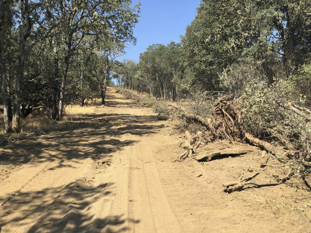 This photo taken Friday, Aug. 10, 2018 near Lakeport, Calif. shows a dirt path left behind when a bulldozer toppled trees in an effort to contain part...