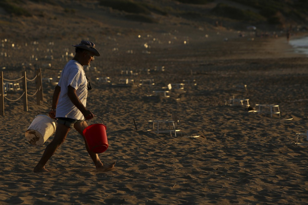 PHOTO GALLERY - In this photo taken on Thursday, Aug. 9, 2018, Marine biologists Andreas Pistentis holds a bucket in each hand as he walks among sea t...