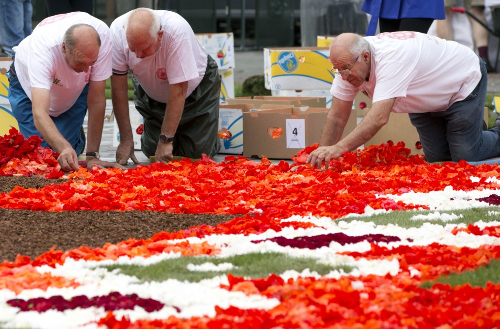 Volunteers lay out a section of the Brussels Flower Carpet on the Grand Place in Brussels, Thursday, Aug. 16, 2018. More than 500,000 flowers were use...