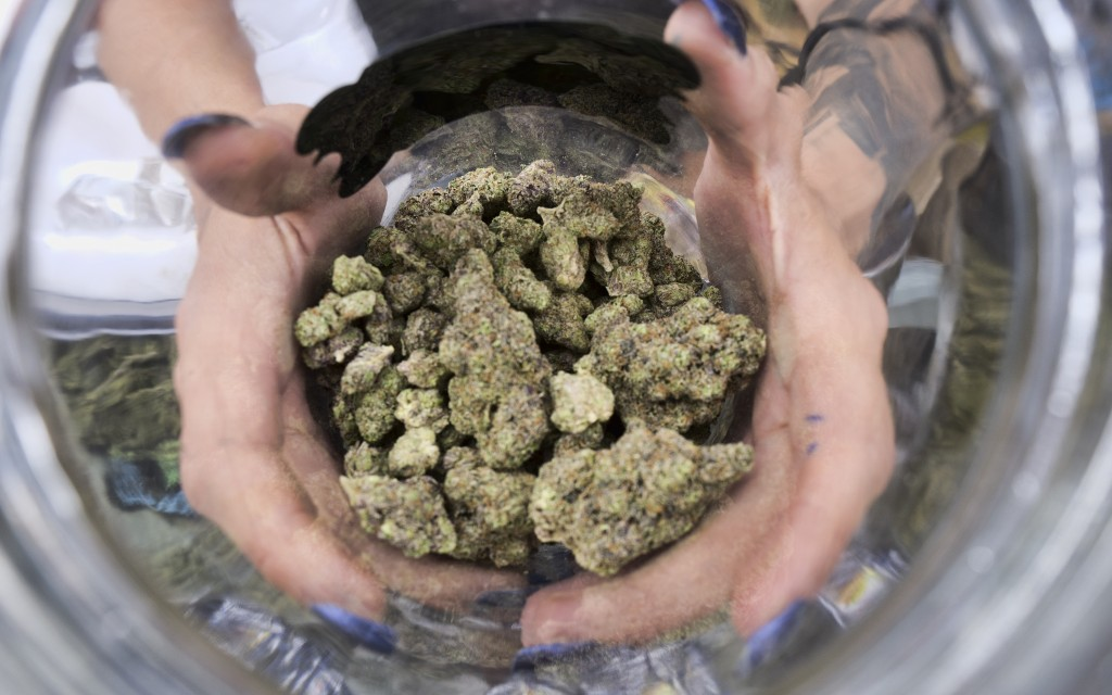 FILE - In this April 21, 2018, file photo a bud tender displays a jar of cannabis at the High Times 420 SoCal Cannabis Cup in San Bernardino, Calif. W...