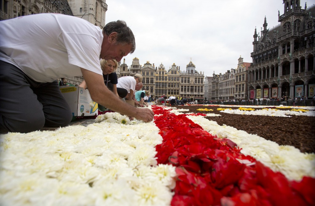 A group of volunteers lay out a section of the Brussels Flower Carpet on the Grand Place in Brussels, Thursday, Aug. 16, 2018. More than 500,000 flowe...
