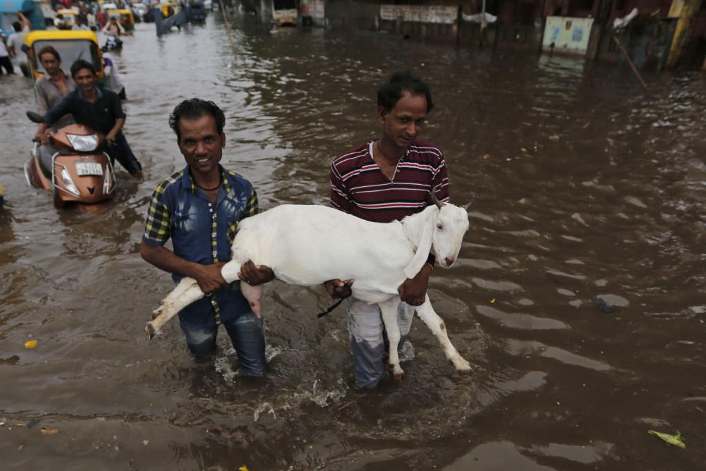 Indian men carry a goat past floodwaters after heavy rainfall in Ahmadabad, India, Friday, Aug. 17, 2018. India receives its annual rainfall from June...
