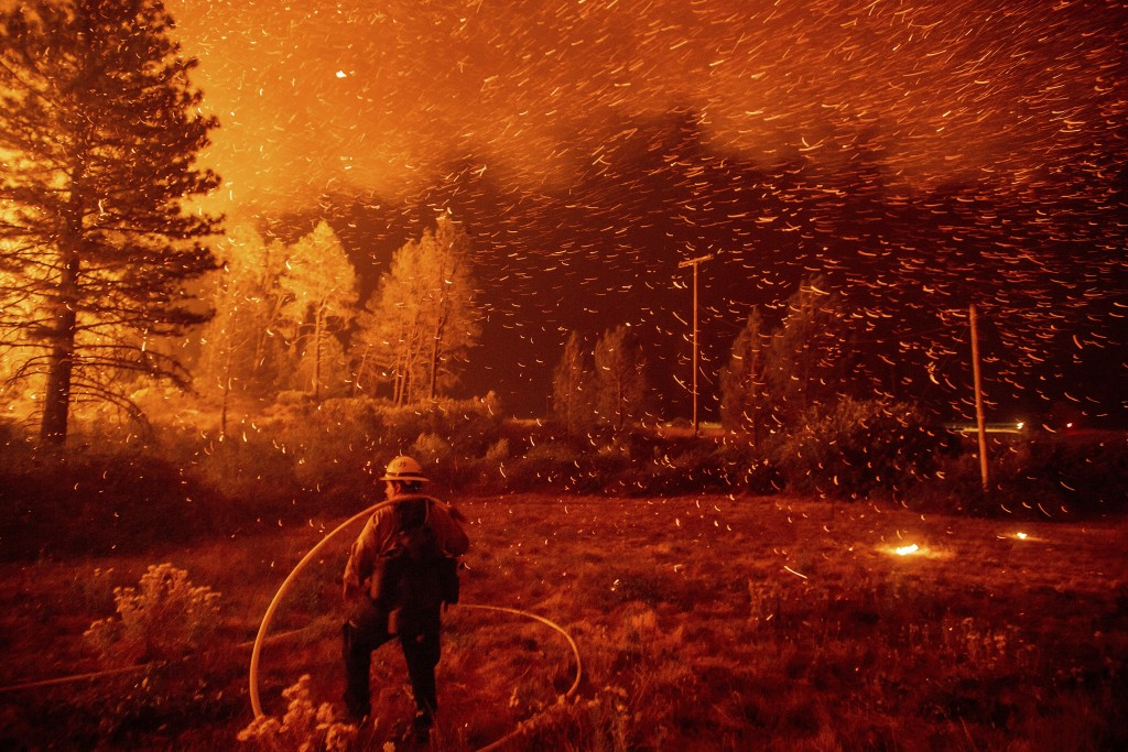 Embers fly above a firefighter as he works to control a backfire as the Delta Fire burns in the Shasta-Trinity National Forest, Calif., on Thursday, S