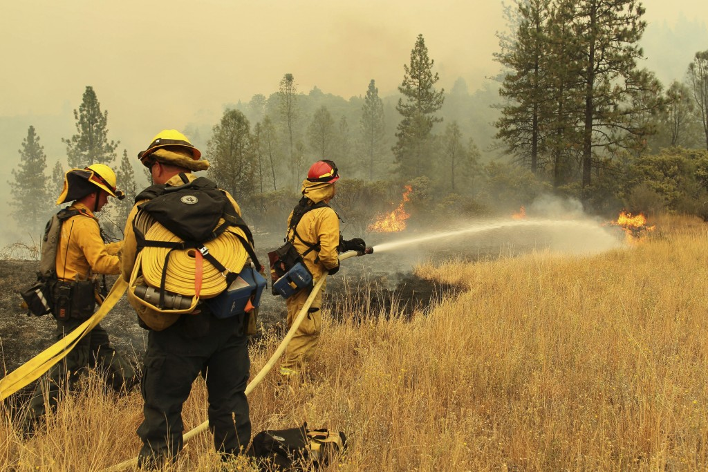 In this Friday, Sept. 7, 2018 photo, fire fighters from Yocha Dehe Fire Department work together to put out a grass fire along I-5 at Earl Sholes Memo