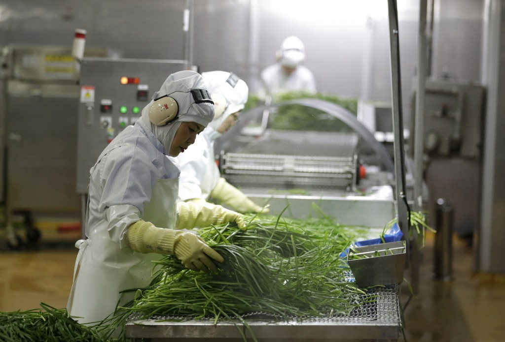 In this July 18, 2018, photo, workers inspect chives before they go into Bibigo dumplings at an automated factory of CJ CheilJedang Corp. in Incheon,