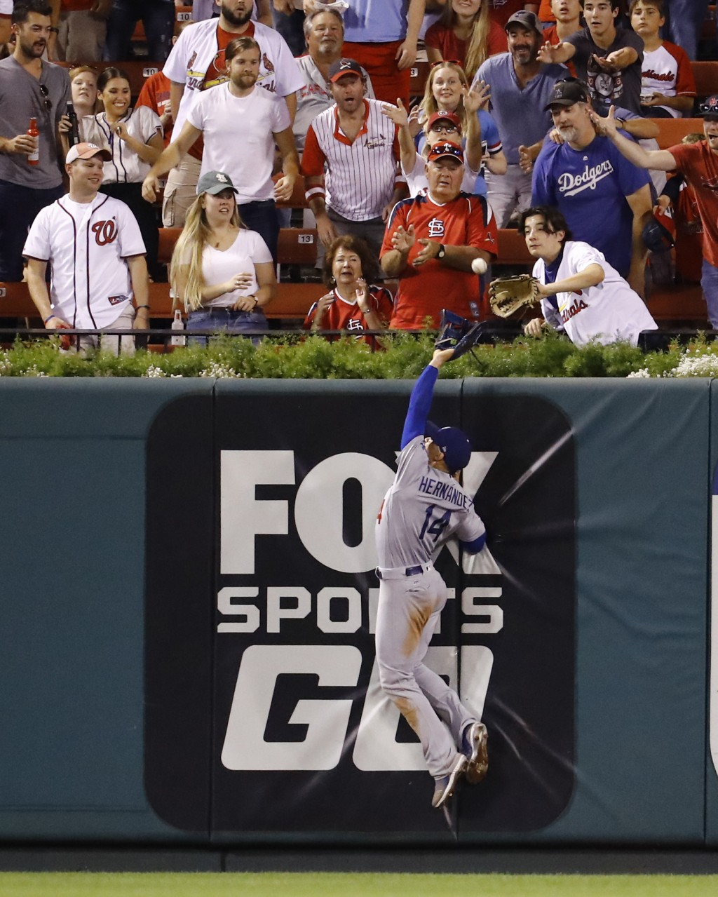Los Angeles Dodgers center fielder Enrique Hernandez cannot catch a home run hit by St. Louis Cardinals' Tyson Ross during the fifth inning of a baseb
