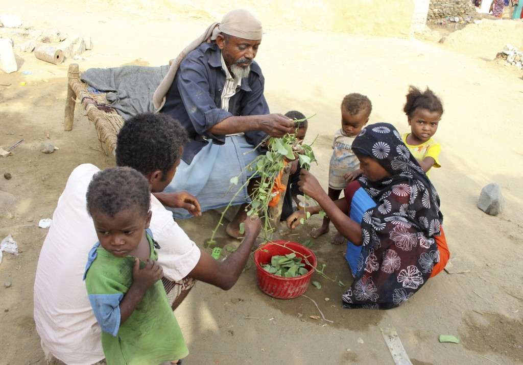 In this Aug. 25, 2018 photo, a man feeds children Halas, a climbing vine of green leaves, in Aslam, Hajjah, Yemen. Yemenis in the isolated pocket in t