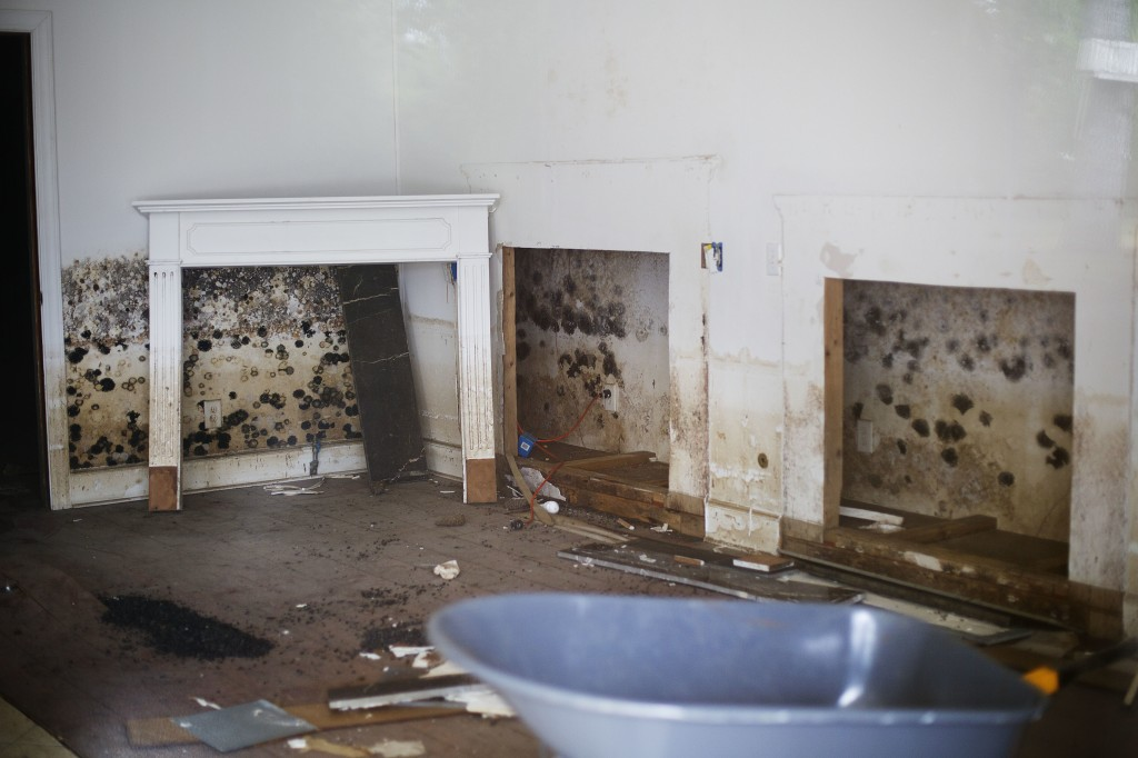 Water damage is seen in a store along Main Street nearly two years after it was flooded from Hurricane Matthew in Nichols, S.C., Thursday, Sept. 13, 2...