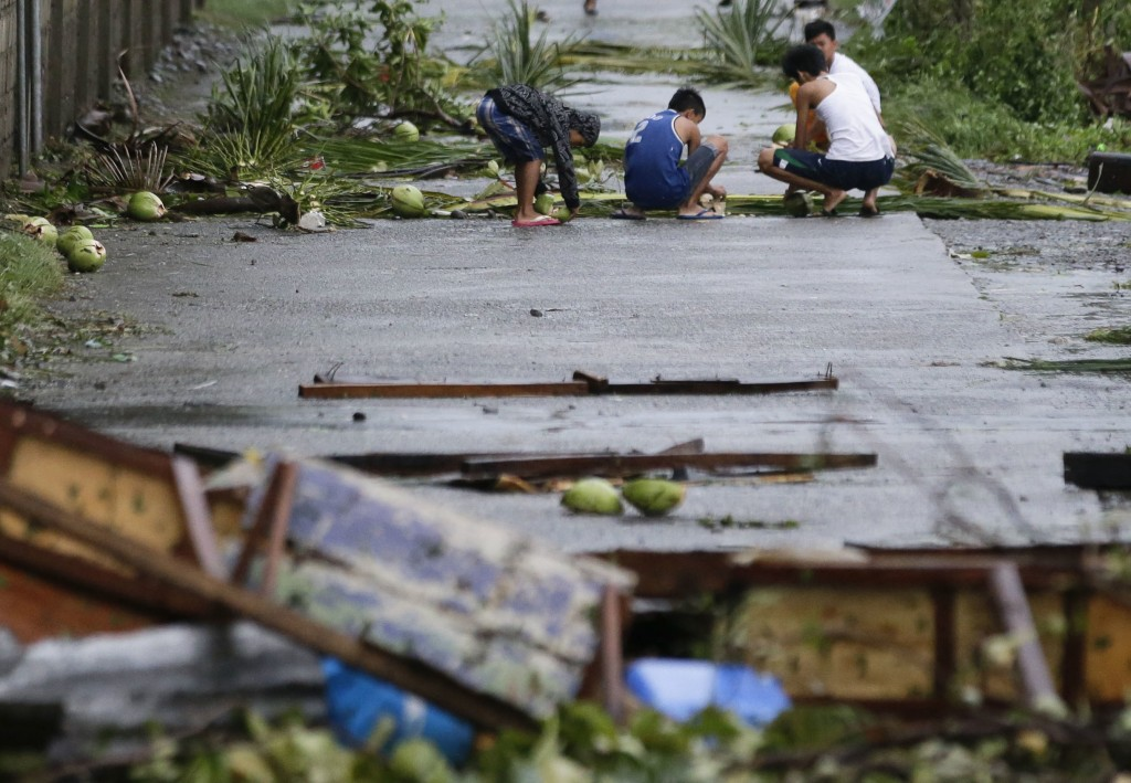 Residents collect coconuts which fell due to strong from Typhoon Mangkhut as it barreled across Tuguegarao city, Cagayan province, northeastern Philip...