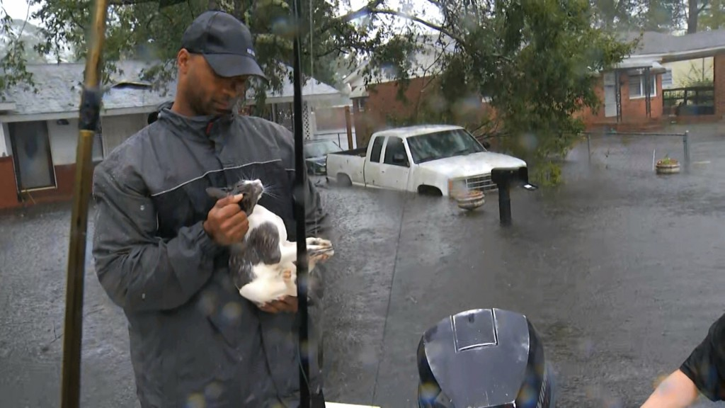 In this image from video, a resident holds a cat rescued by boat in floodwaters in Jacksonville, N.C., Friday, Sept. 14, 2018. (AP Photo/Robert Bumste