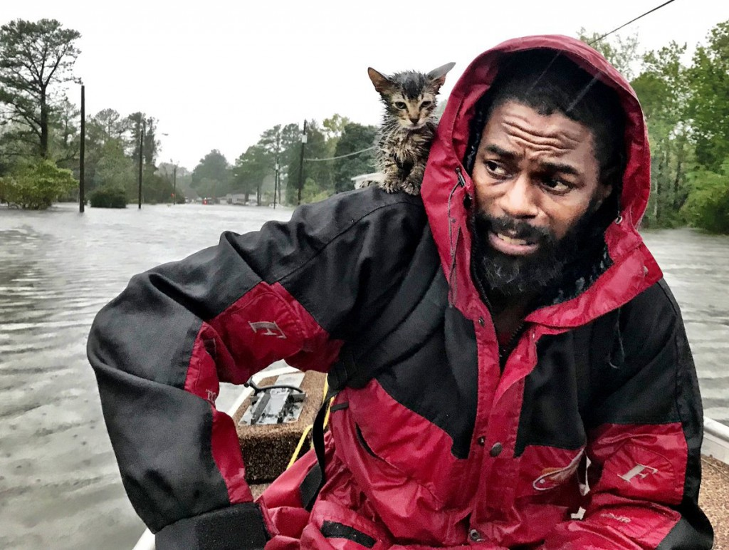 """Robert Simmons Jr. and his kitten """"Survivor"""" are rescued from floodwaters after Hurricane Florence dumped several inches of rain in the area overnight"""