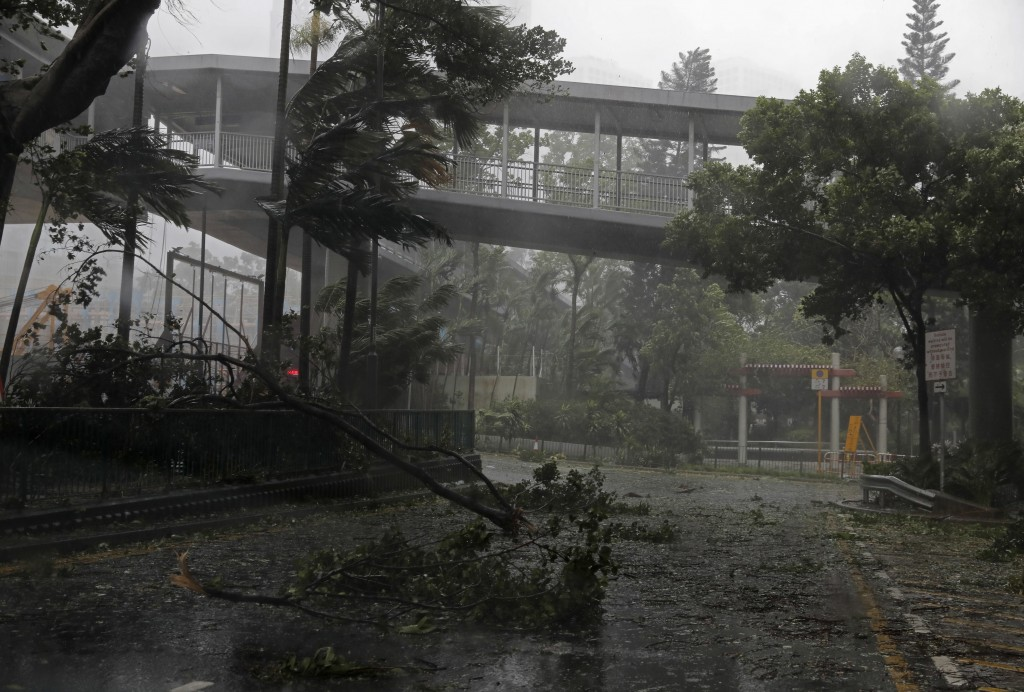 A fallen tree caused by typhoon Mangkhut lies at a street in Hong Kong, Sunday, Sept. 16, 2018. Hong Kong and southern China hunkered down as strong w